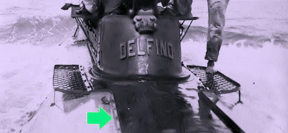 delf1.jpg
